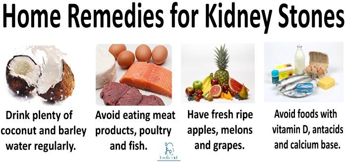 Dog Food Good For Kidney Stones