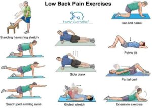 Back Pain Relief EXERCISE