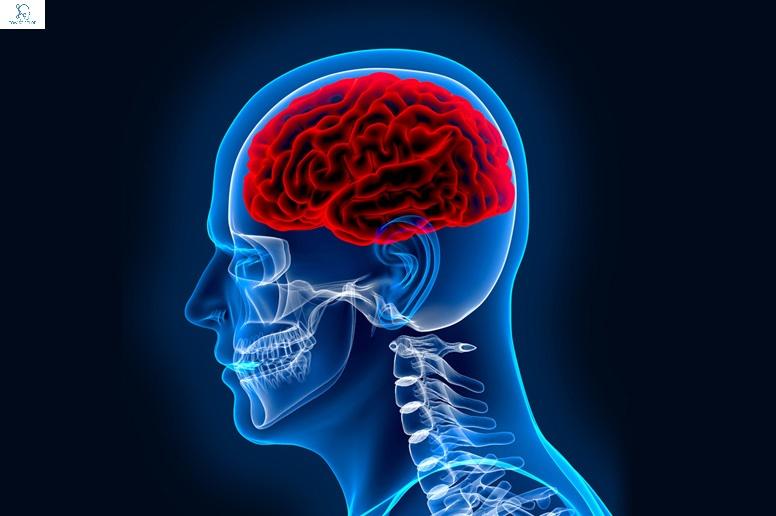 NEUROLOGIST IN DHAKA