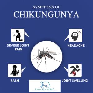 chikungunya fever treatment